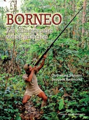 Livre : Bornéo, la diagonale vert jungle